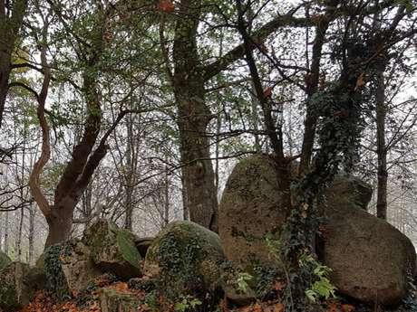 Cerizay - La boucle du Plessis, chemin des lavoirs et châteaux