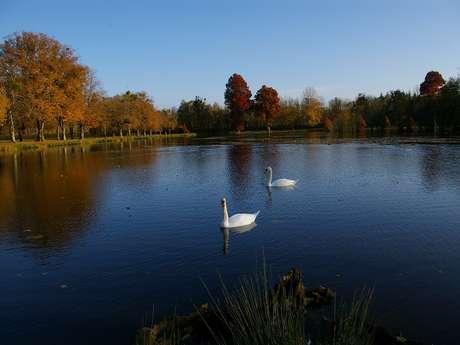 Pêche dans le Parc du château