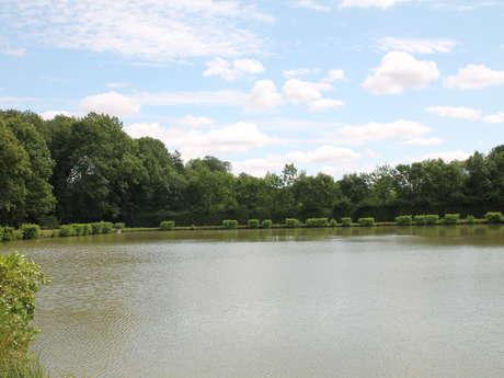 Pêche à l'étang communal de la cayenne