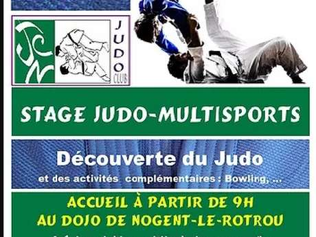 Stage Judo et multisports