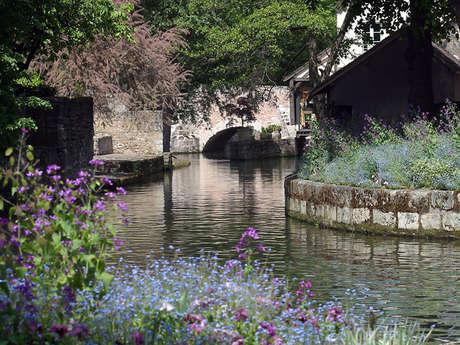 Visites audioguidées de Chartres
