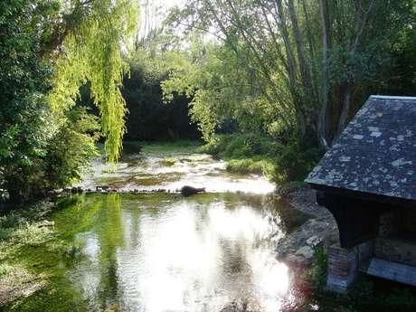 La vallée de la Conie à Châteaudun