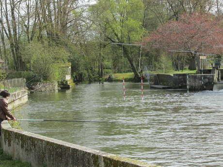 Sites de pêche sur Châteaudun
