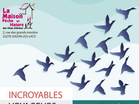 """Exposition """"Incroyables voyageurs"""" - SUSPENDUE jusqu'au 15 Avril"""