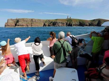 Excursion en bateau du Cap d'Erquy au Cap Fréhel