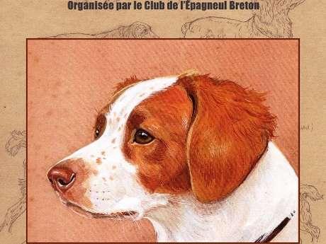Rassemblement national d'épagneuls bretons