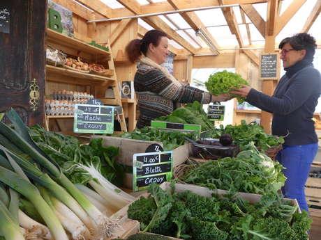 Production de légumes biologiques - Côté Légumes