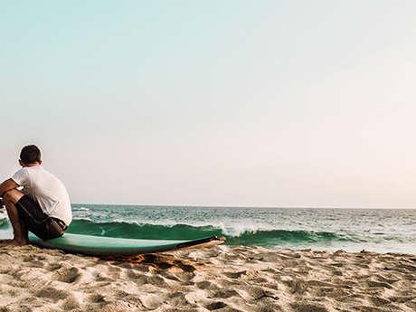 Protect the Ocean - Collectes de déchets