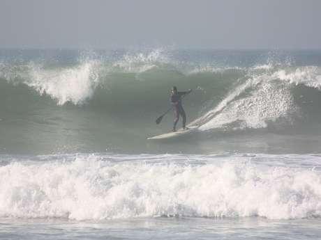 Waterman Surf Club