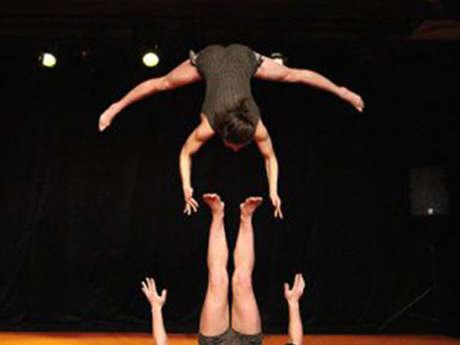 Cirque - Mule Festival Circonova