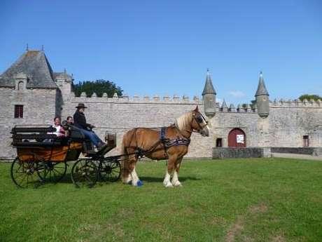 Balades en calèche dans le parc du Château de Bienassis