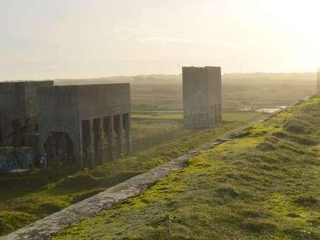 Balade nature - Quand l'histoire façonne les espaces naturels