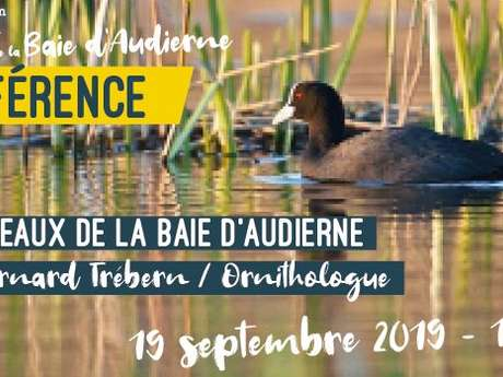 """Conférence """"Les oiseaux de la Baie d'Audierne"""""""