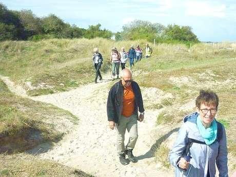 Randonnée terre - Sentiers Bretons, herbes et tisanes.