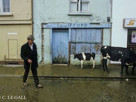 Exposition : Irlande, photographies