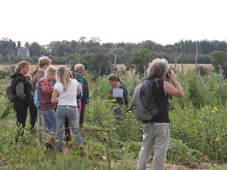 Atelier nature: jardinage au naturel