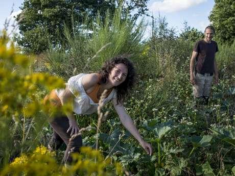 """Visite guidée du jardin en permaculture """"La Pâture es Chênes"""""""