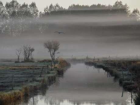 Le polder de A à Z : la grande boucle
