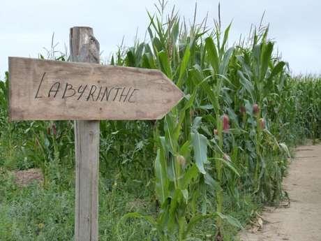 Le monde agricole : Découverte de la ferme de Malido