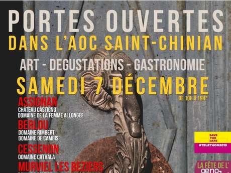 PORTES OUVERTES : DANS L'AOC SAINT-CHINIAN