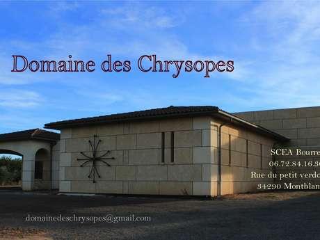 DOMAINE DES CHRYSOPES (SCEA BOURRET)