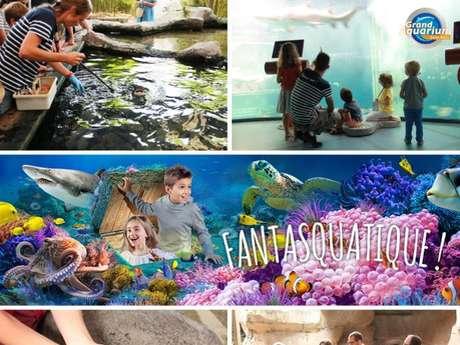 Animations gratuites au Grand Aquarium