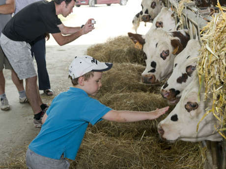 Un après-midi à la ferme - La Trinité Porhoët