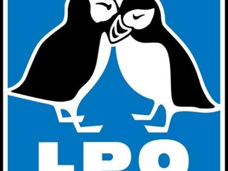 Sortie LPO : La face cachée des goélands, les oiseaux de bord de mer vus autrement
