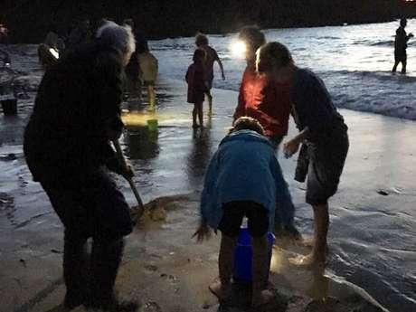 Sortie nature : Pêche aux lançons