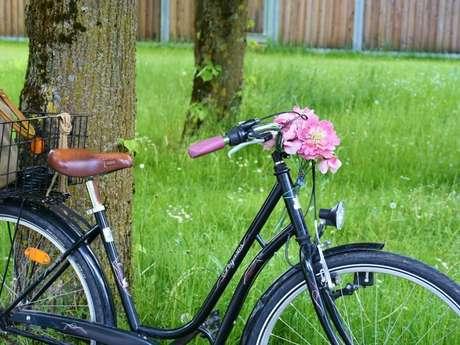 Cycles Nicole