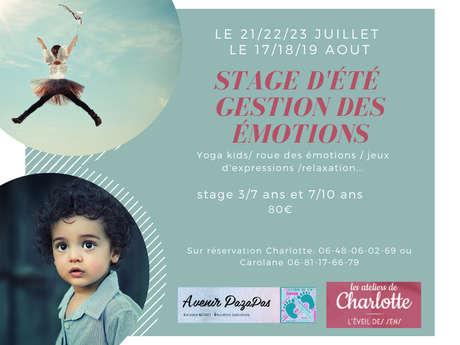 """Stage d'été """"Gestion des émotions"""""""