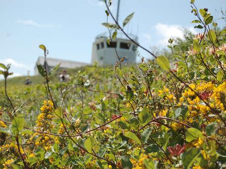 Circuit de la flore à Cancale