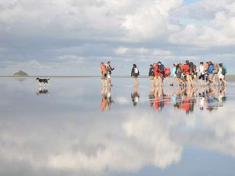 Escapades en Baie du Mont-Saint-Michel avec des guides natures