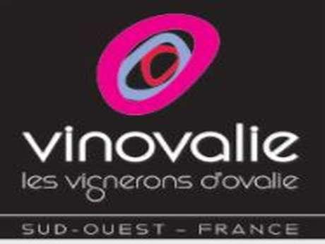 CAVE DE FRONTON - VINOVALIE