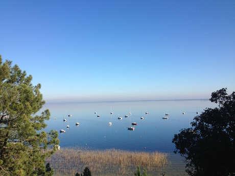 Running de 5 km à Maubuisson - Tour du lac