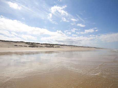Aire de pique-nique plage sud