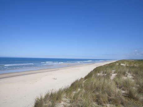 Aire de pique-nique plage sud à Carcans-Océan