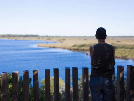 Le sentier de la Réserve Naturelle de l'étang de Cousseau