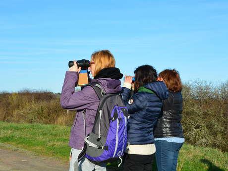 Ecoacteurs en Médoc,Tourisme de Nature