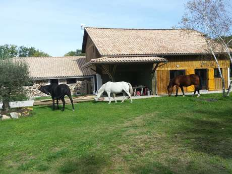 Poney club de Talaris