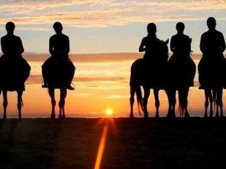 Atlantic Club Equestre - Ferme pédagogique