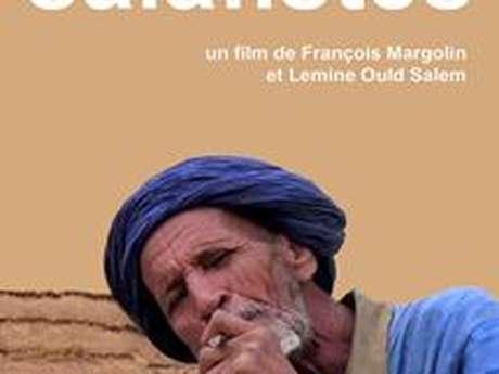 Projection : ''Salafistes''