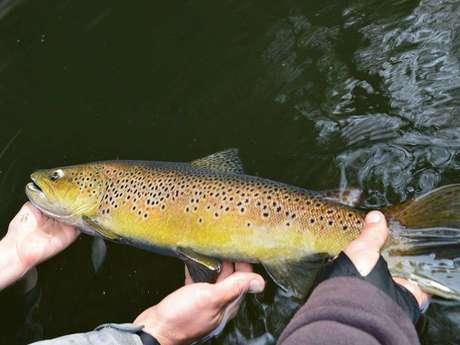 Adrien SAUVESTRE Moniteur guide de pêche sur la  Dordogne