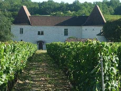 Château Tour Miraval