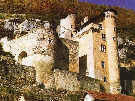Journées Européennes du Patrimoine le Château de Larroque-Toirac, Visites et Brocante
