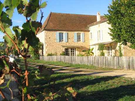 Château Cantelauze