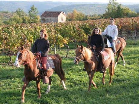 Ferme Equestre de La Fontaine