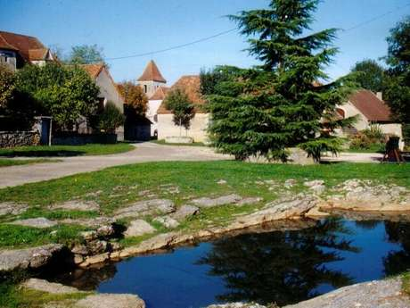 Aire de pique-nique à Fontanes-du-Causse