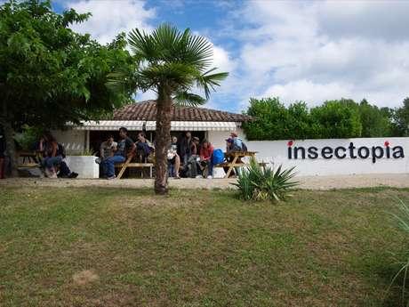 Insectopia - Insectes et papillons vivants