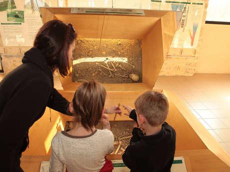 Musée de l'Homme de Neandertal '' Jean Bouyssonie ''